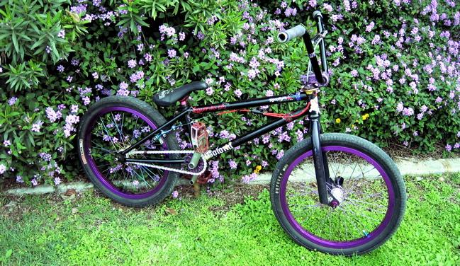 alexbike.jpg