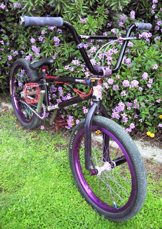 alexbike2.jpg