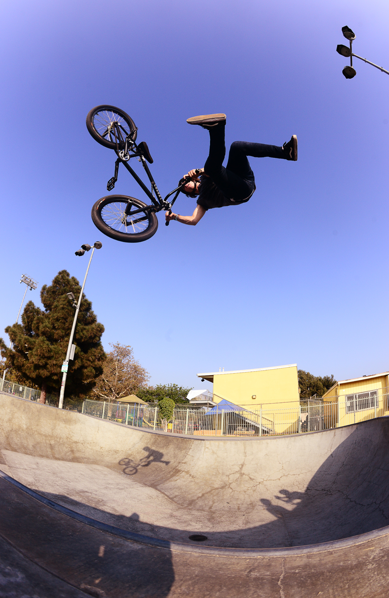 chris-whip-belvedere